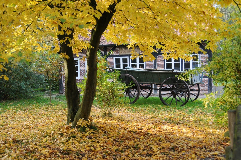 Museumsdorf Cloppenbur