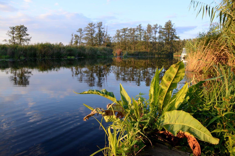 De Peene is een van de mooiste rivieren in Mecklenburg-Vorpommern.