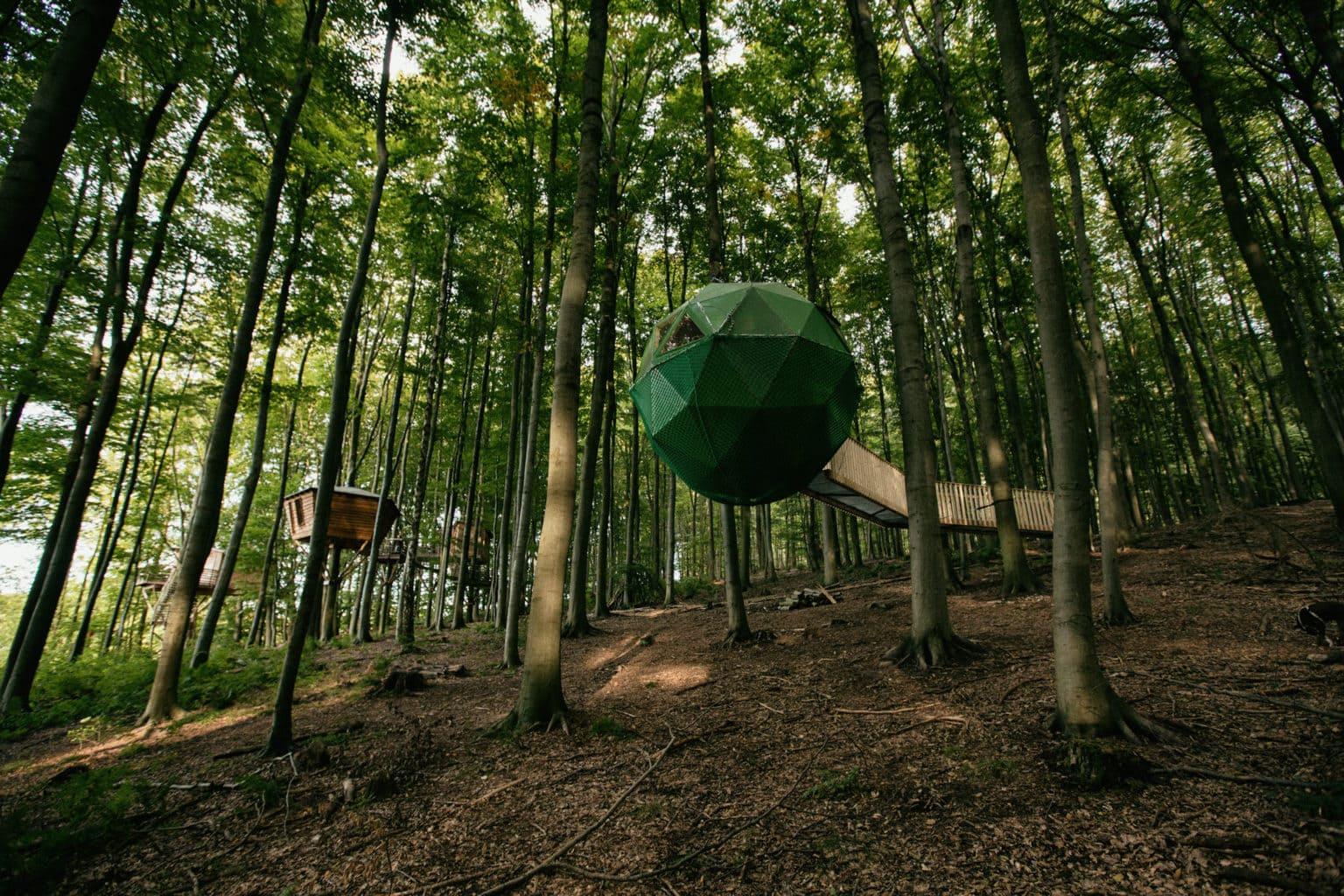 Robins Nest/ Foto: Faruk Pinjo