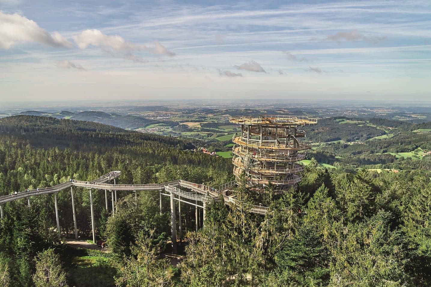 Spectaculair boomtoppenpad in het Beierse Woud