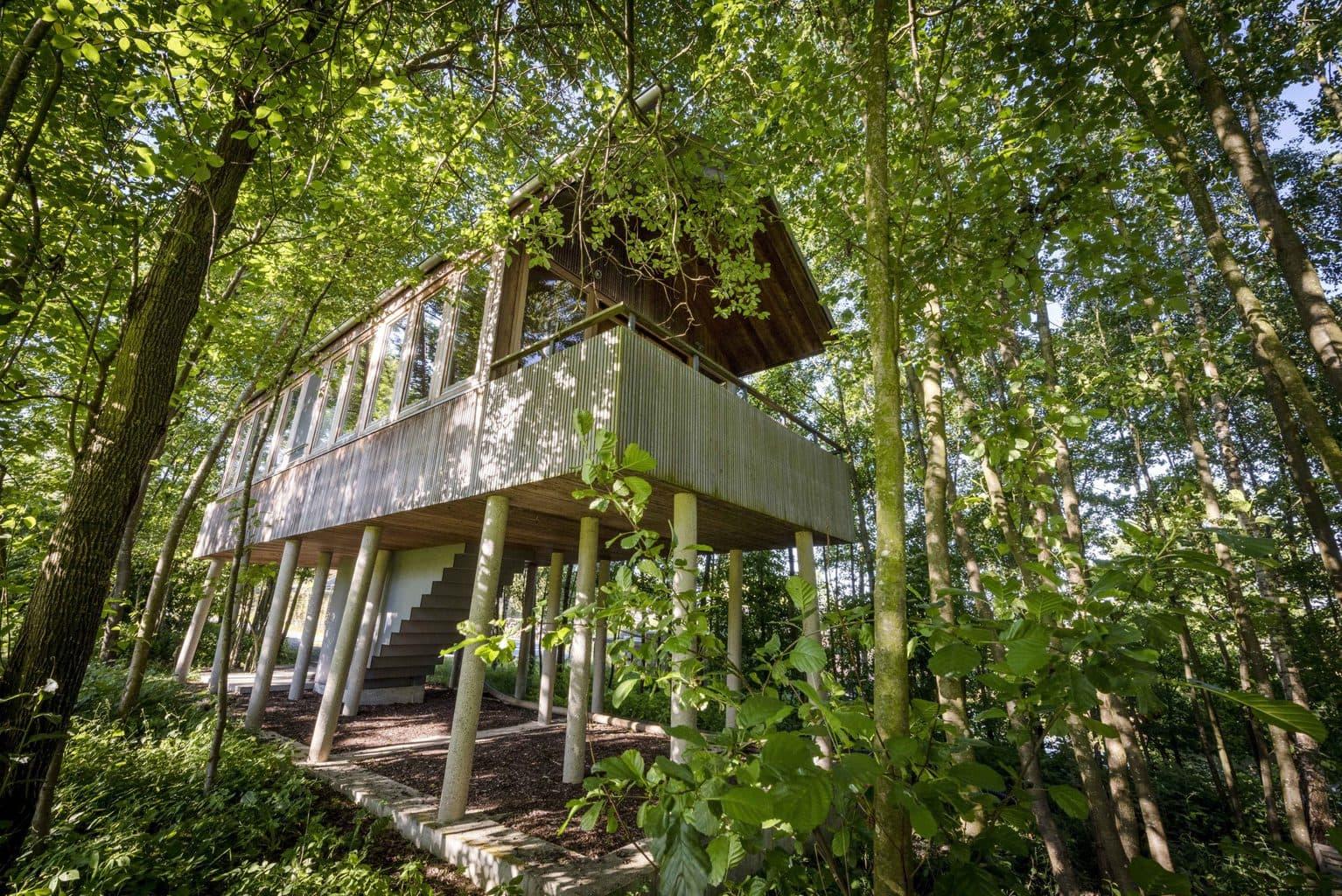 Een boomhuis in Hotel Hofgut Hafnerleiten in Beieren