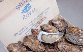 Duitse oesters komen uit de Noordzee en worden op het eiland Sylt geteeld