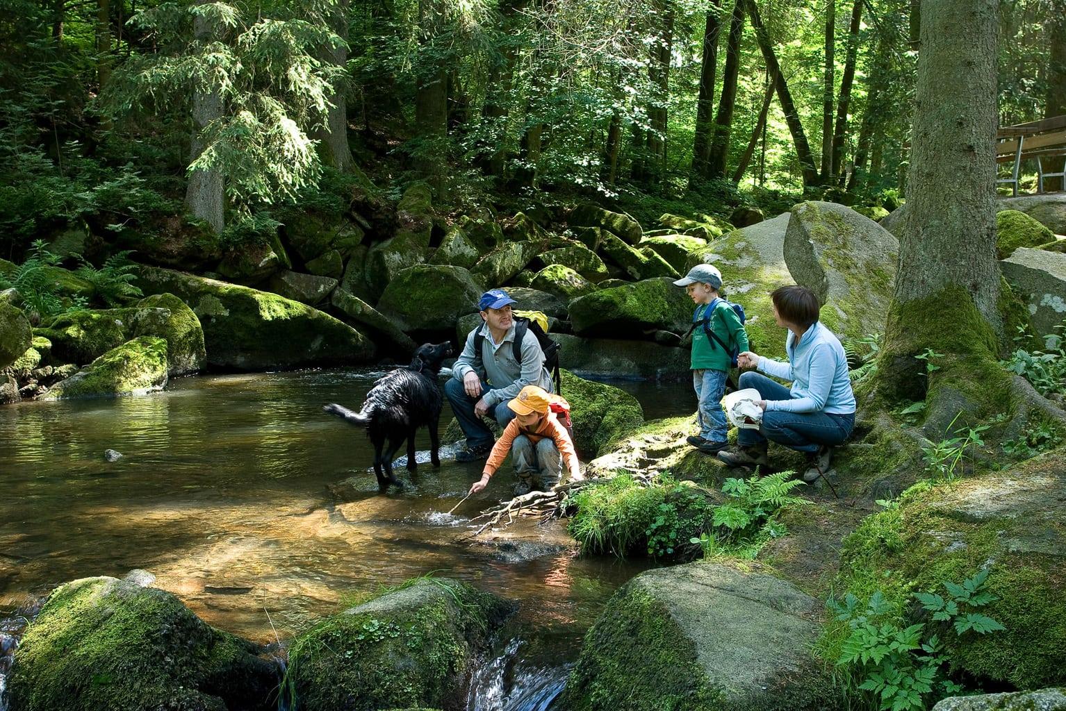 Een familie tijdens het bosbaden in Beieren