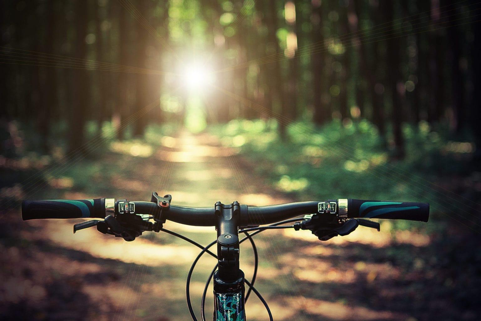 Een fiets in een bos in de Duitse deelstaat Brandenburg