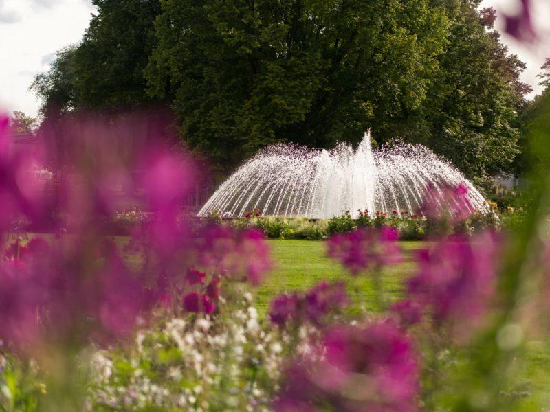 Een fontein behoort ondermeer tot de attracties van de Bundesgartenschau in Erfurt