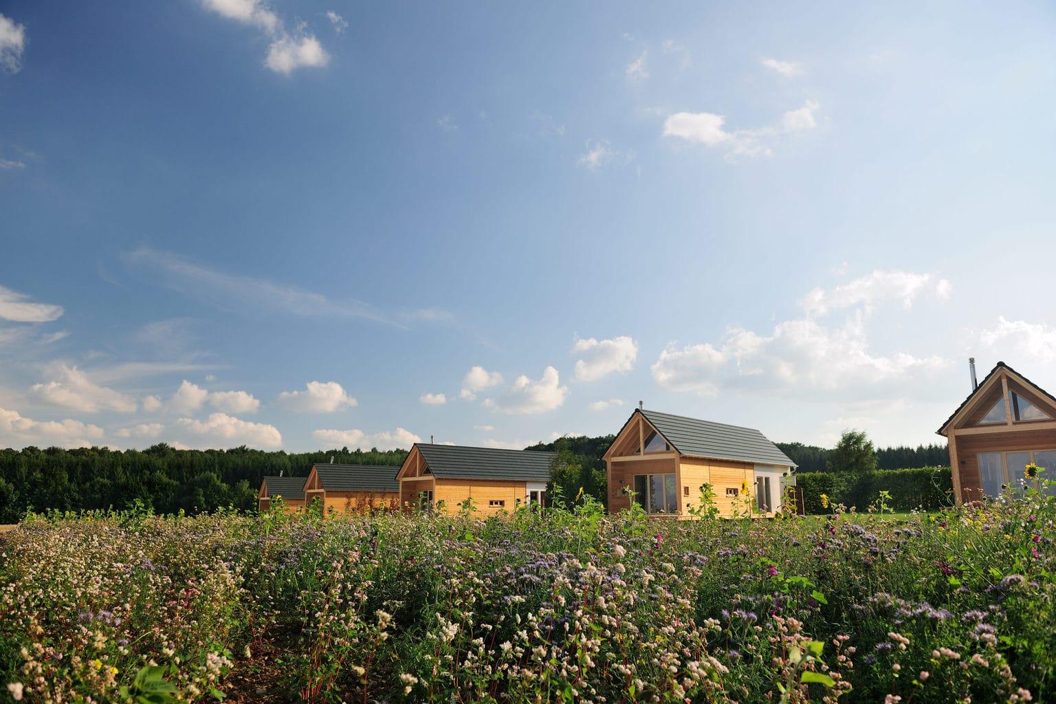 Van hout gemaakte chalets in de Hainichhöfe in Thüringen