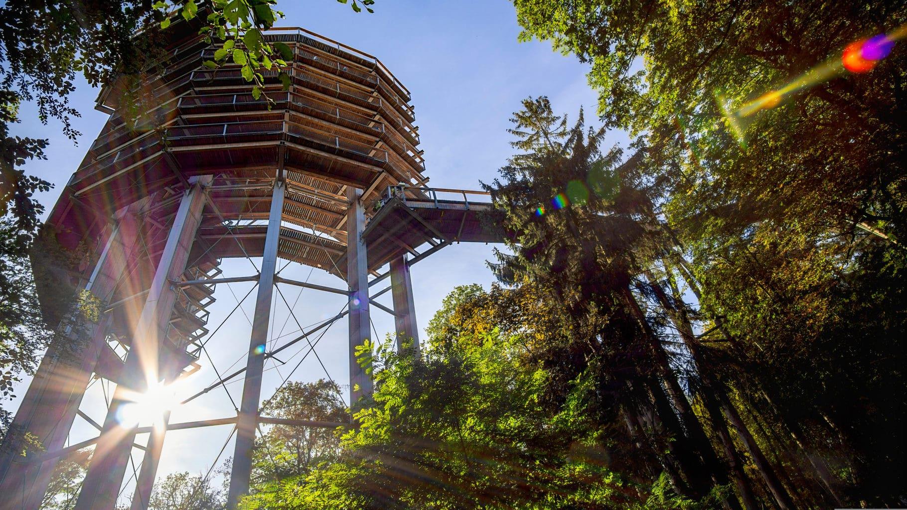Uitzichttoren bij de Saarschleife in het Saarland met bos