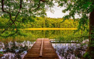 Een steegje aan een meer in de Uckermark in de Duitse deelstaat Brandenburg