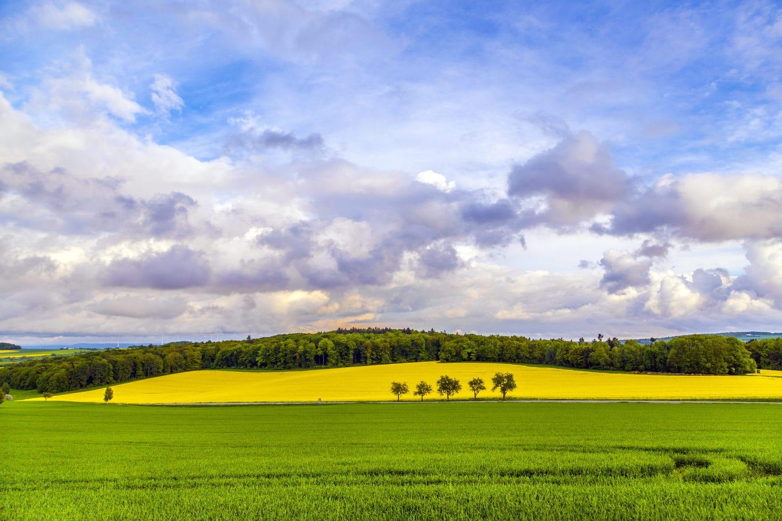 Het Bliesgau in het Saarland is een schitterend terrein voor wandelingen