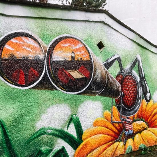 Insect met verrekijker street art in Ehrenfeld