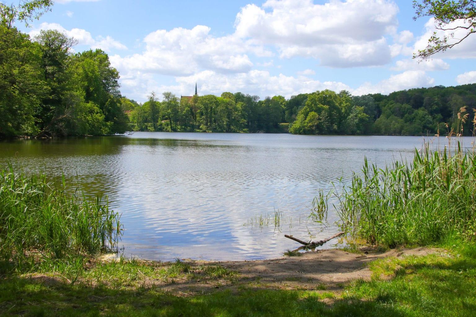 Het meertje Schorfheide in Oostduitsland