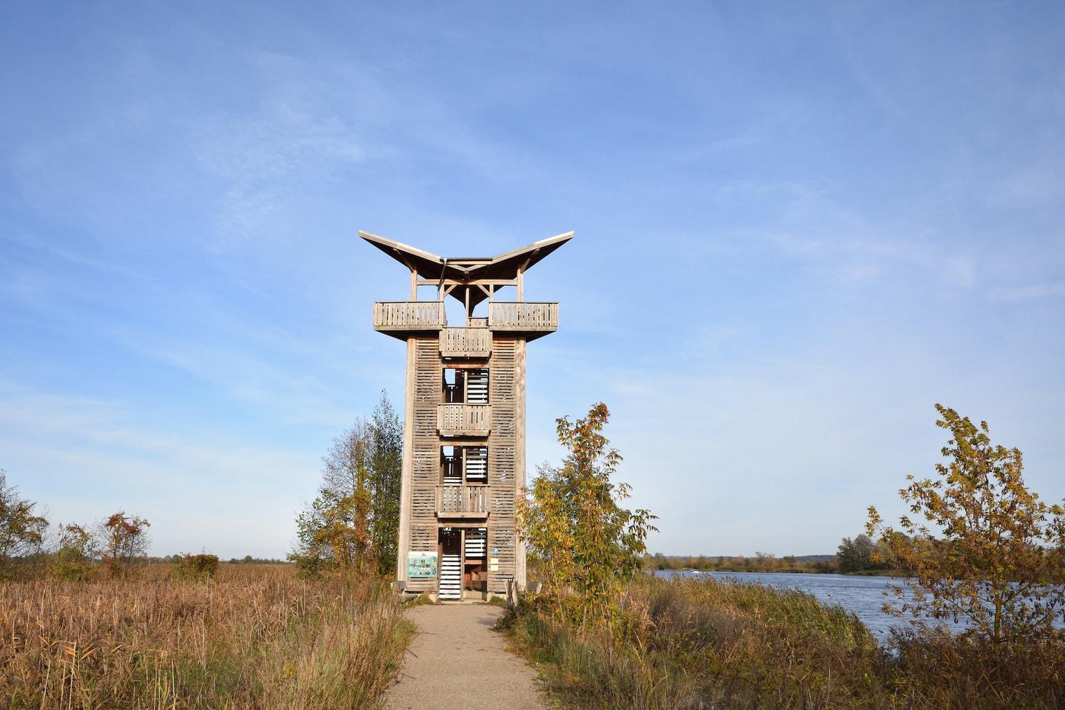 Uitzichtoren in nationaal park Untere Oder an de Poolse grens in Duitsland
