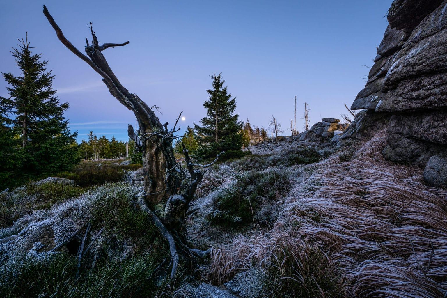 De Hohnekann met de maan in het nationaalpark Harz