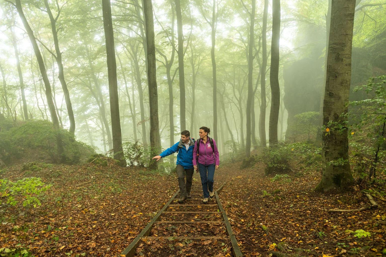 Wandelaars op het Felsenpad in het bos bei Gerolstein langs de Duitse Vulkaanroute
