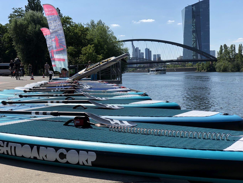 Stand-up-paddle Boards aan de oever van de Main in Frankfurt