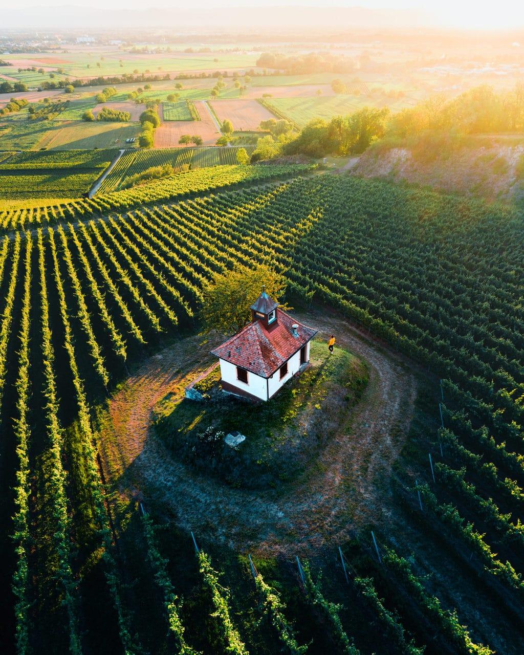 Het kapeltje van Ihringen op de flanken van de Kaiserstuhl in het zuidwesten van Duitsland in het zonlicht