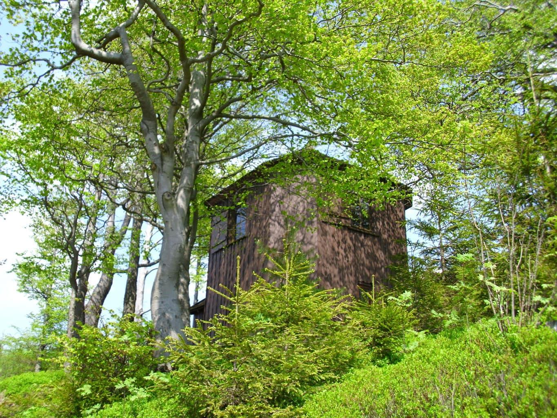Romantisch huisje in het bos in het Thüringer woud