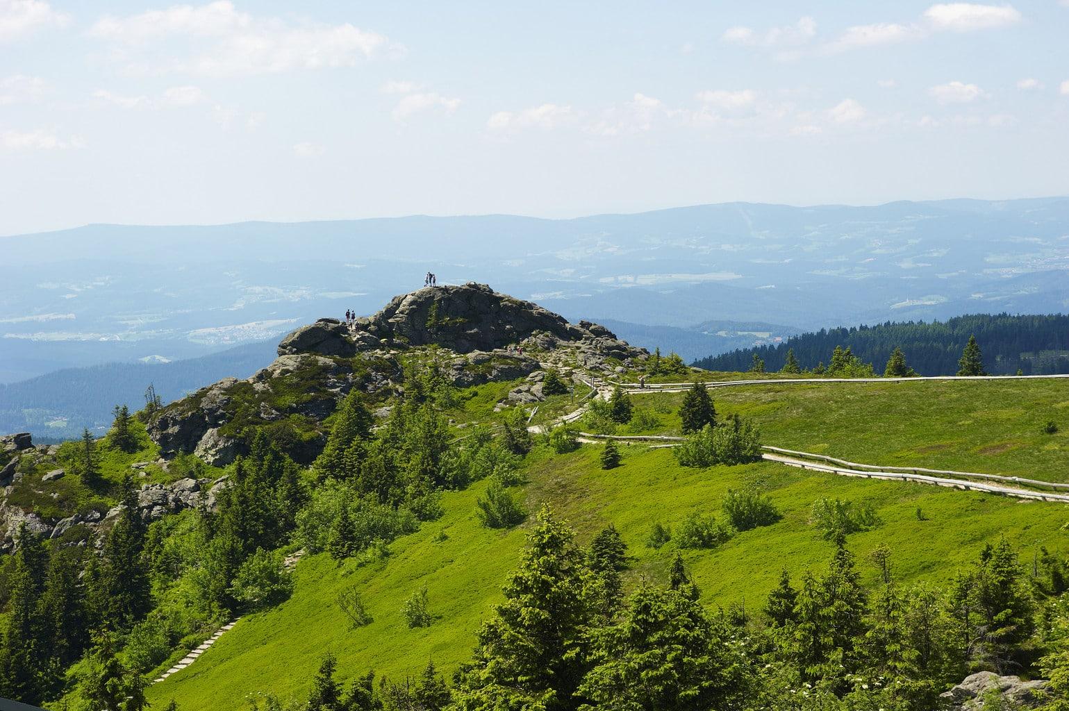 Bergtop met straat in het Nationalpark Bayrischer Wald in de deelstaat Beieren