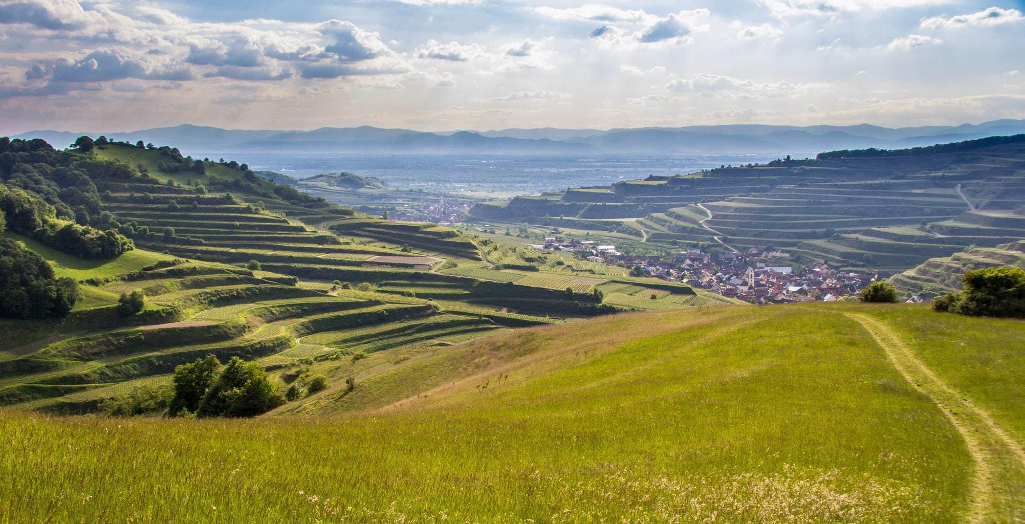 Terrassen vormen her landschap van natuurtuin Kaiserstuhl in het zuidwesten van Duitsland