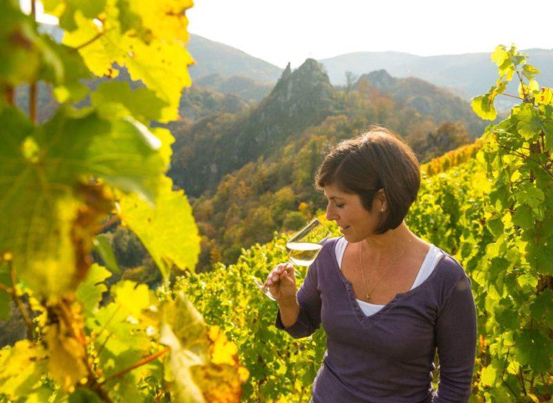 Een vrouw proeft een van de geweldige wijnen van de Ahr in een wijnberg