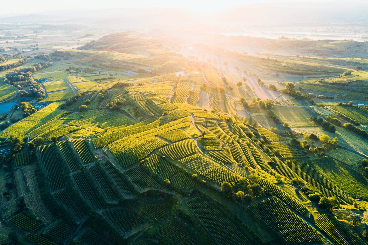Het spectaculair landschap rondom de Kaiserstuhl in Baden-Wuerttemberg in het zonlicht
