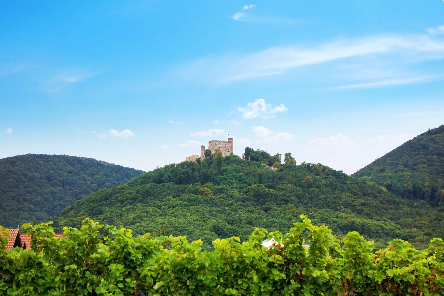 Het Hambacher Schloss ligt inmidden van wijngaarden
