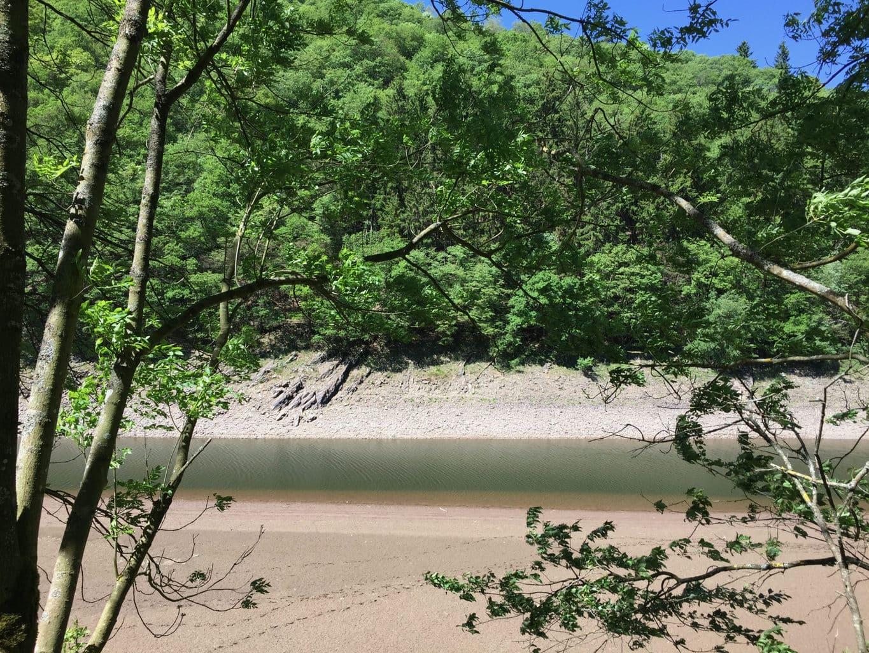 Soms lijk je heel ver weg van alles tijdens de grote ronde om de Rursee langs de banken van rivier Urft
