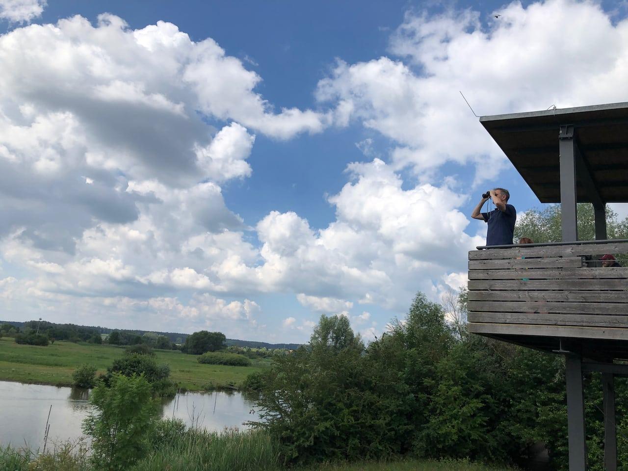 Een schitterend uitzichtspunt op het vogeleiland in de Altmuehlsee in Franken