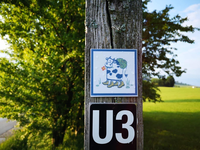 Een bordje met een koe erop wijst de weg op het Milcherlebnispfad in Usseln bij Willingen in het Sauerland