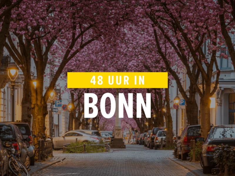 Bonn is de voormalige hoofdstad van Duitsland met supermooie kersenbomen in de oude stad