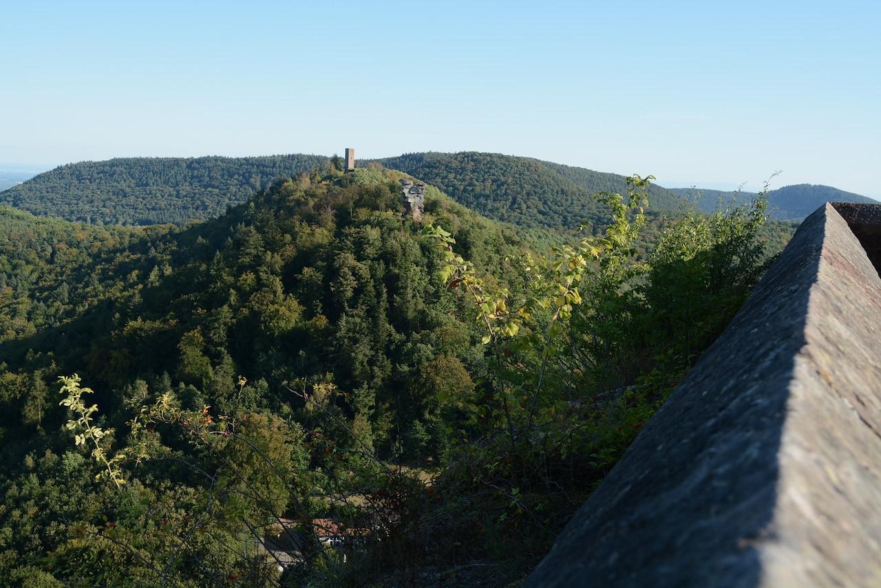 Uitzicht op het Paltser Woud in het Zuidwesten van Duitsland