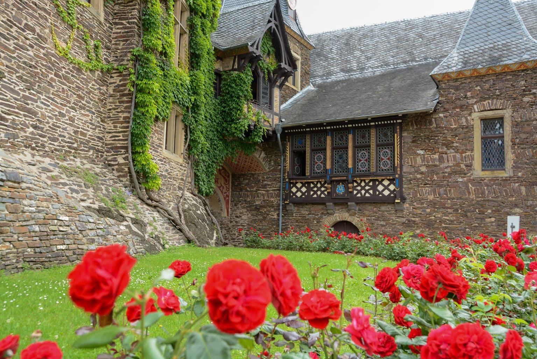 Rozentuin in het binnenhof van Rijksburcht Coburg