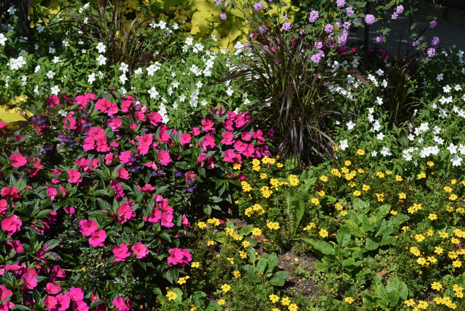 Bloemenbed in Mainau een van de mooiste parken van Duitsland