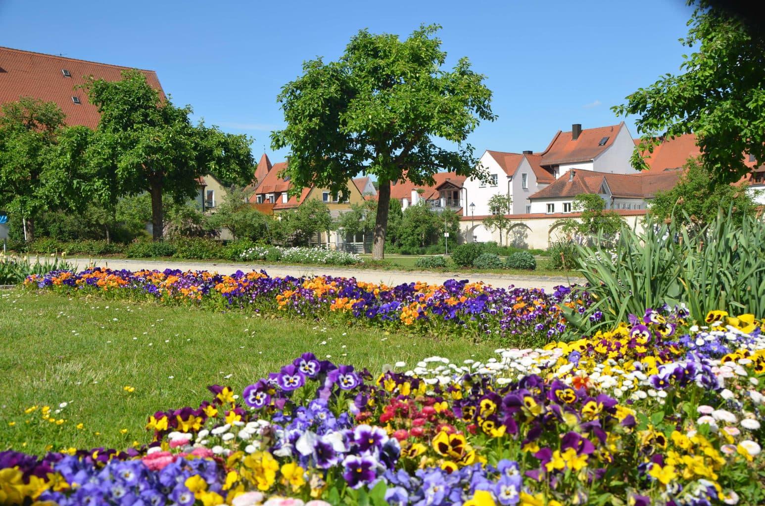 Bloemen in het Maltesergarden in Amberg want dat is een van de groene steden van Beieren