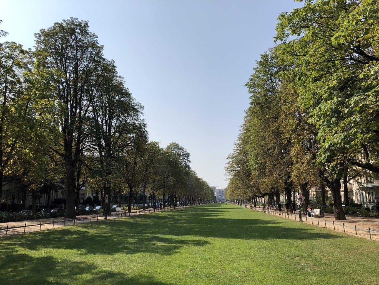 De Poppelsdorfer Allee in Bonn 48 uur in Bonn