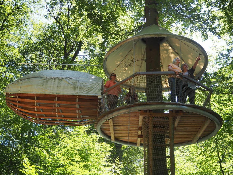 Boomhuis in Outdoorpark Laxhütte in Rijnland-Patls
