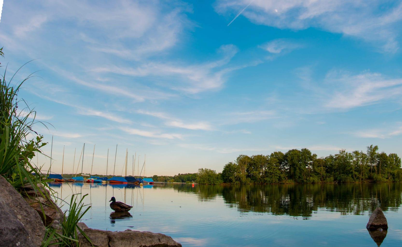 Bootjes op de Unterbacher See in Düsseldorf