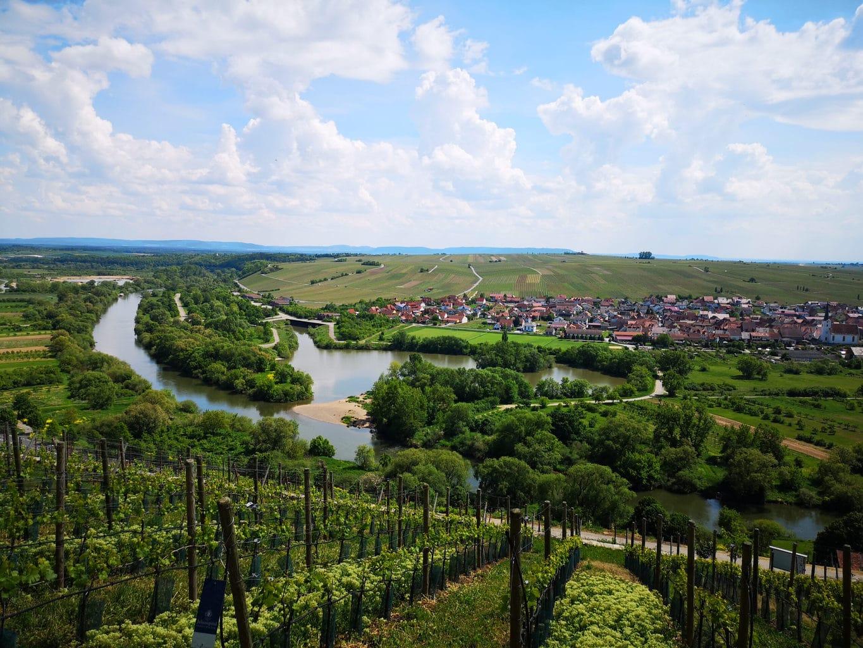 Wijngaarden in de regio Mainschleife in de Duitse deelstaat Hessen en toch weer een fietspad