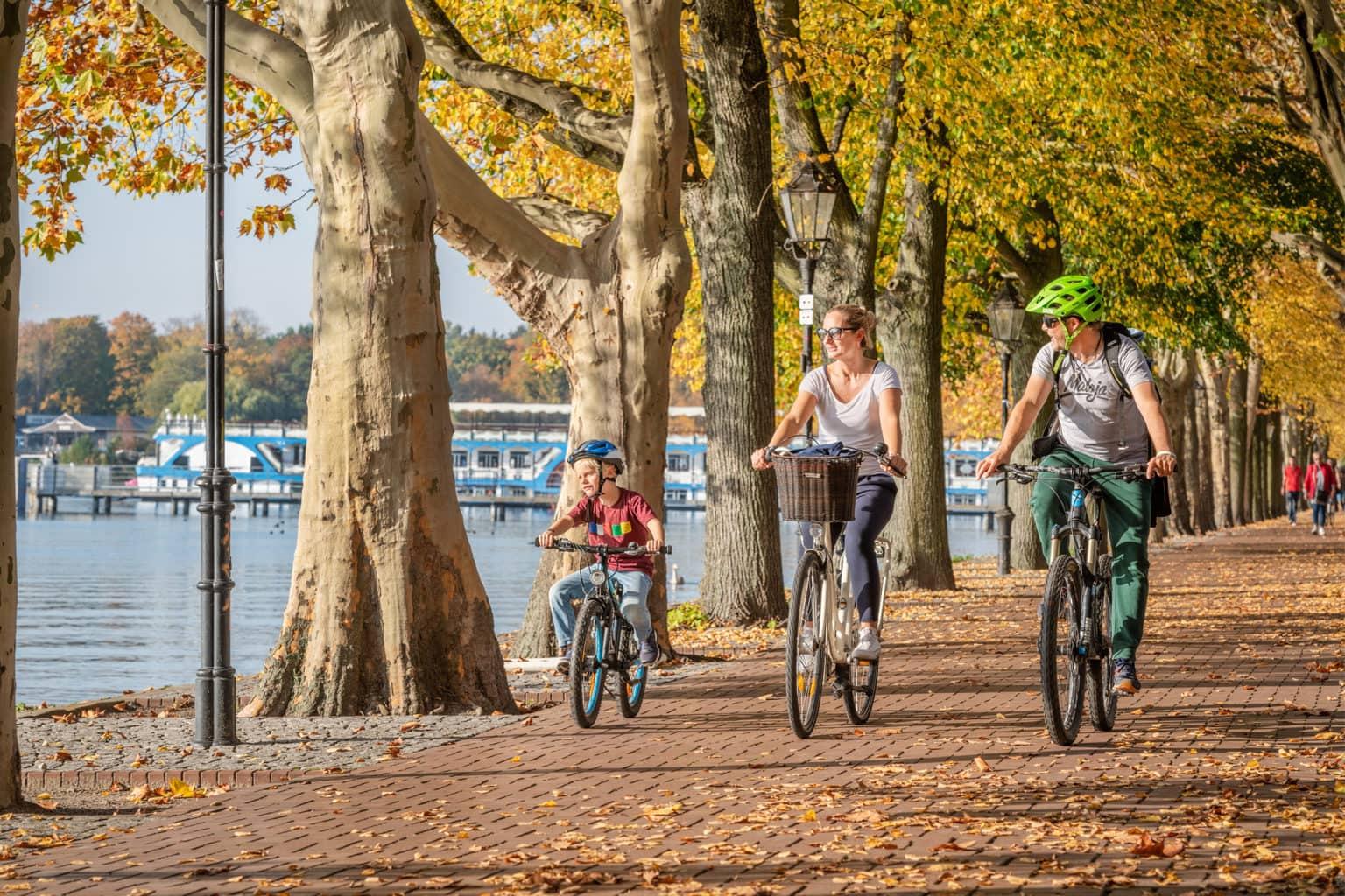 Een familie fietst lekker op de Greenwichpromenade aan de Tegeler See in Berlijn