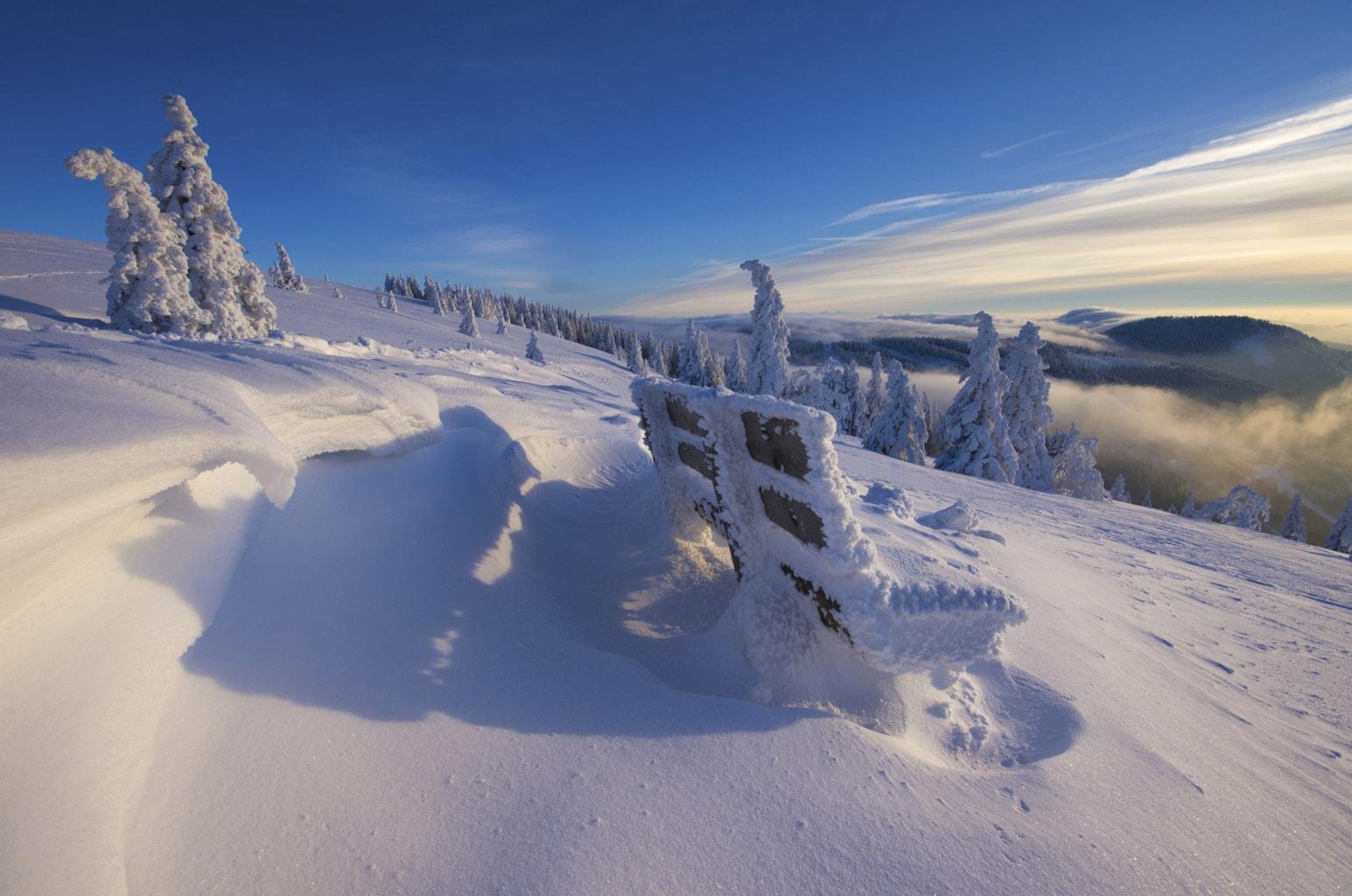 De Feldberg in het Zwarte Woud onder een dik pak sneeuw