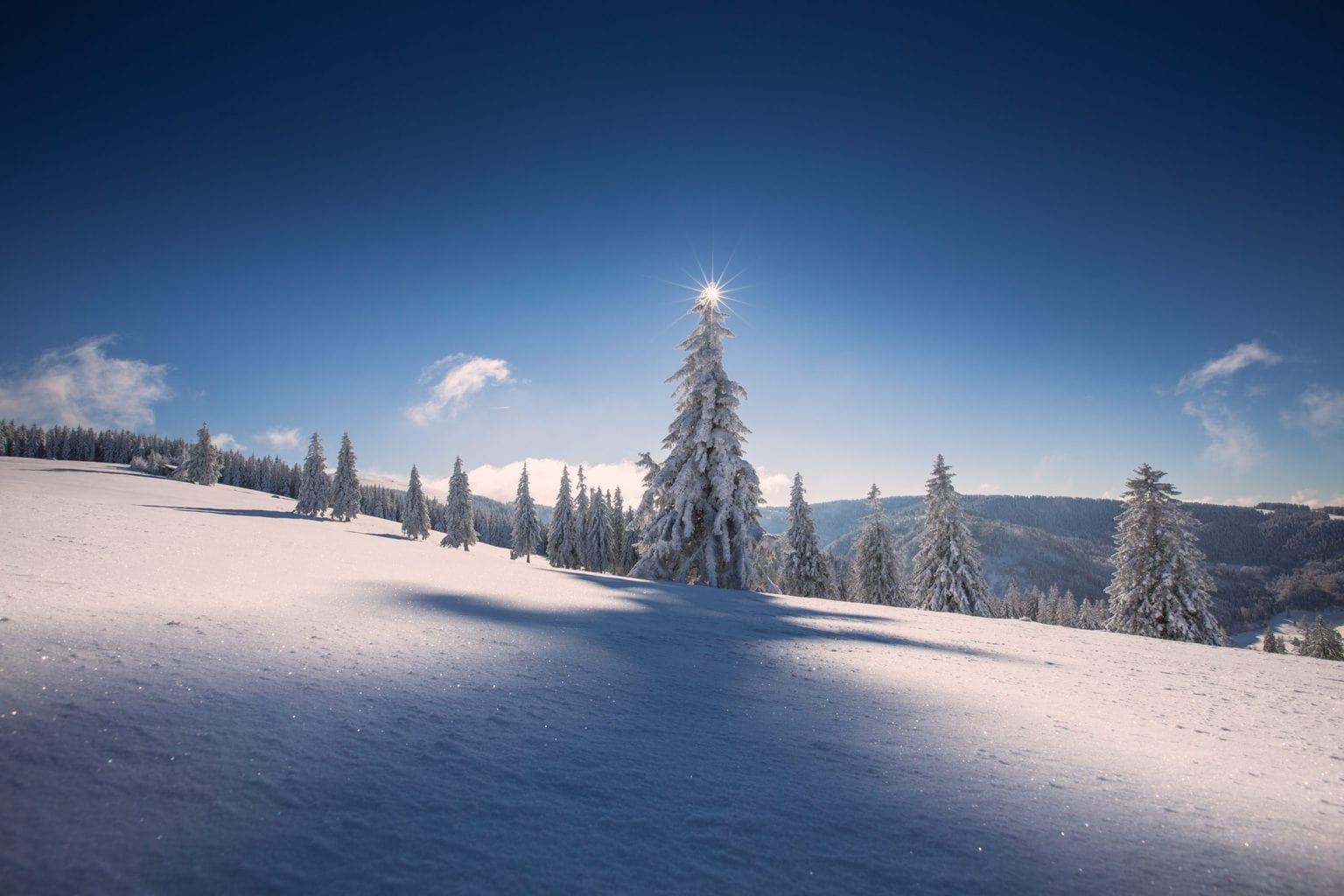 Prachtig winterlandschap in Duitsland wekt zin om te gaan skieën in de corona winter