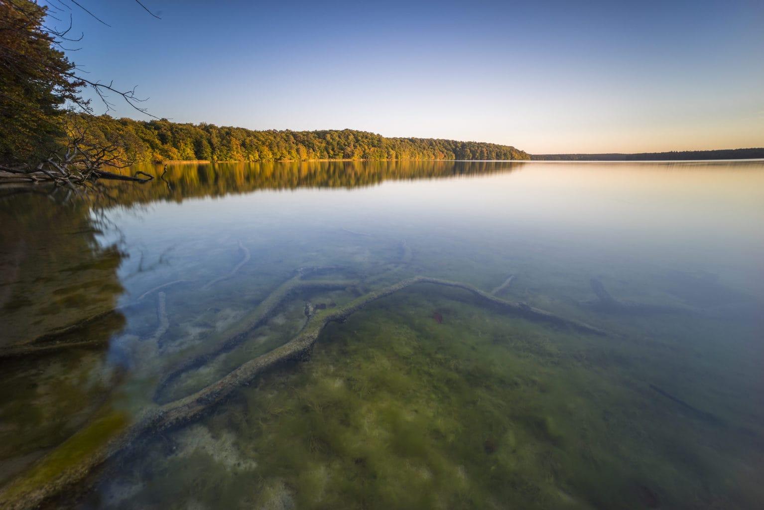 Het meer Stechlinsee aan de Mecklenburgische Seenplatte