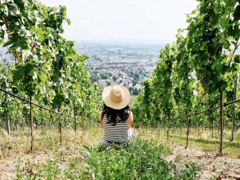 Een vrouw geniet van de uitzicht vanuit een wijnberg bij de Duitse stad Heilbronn