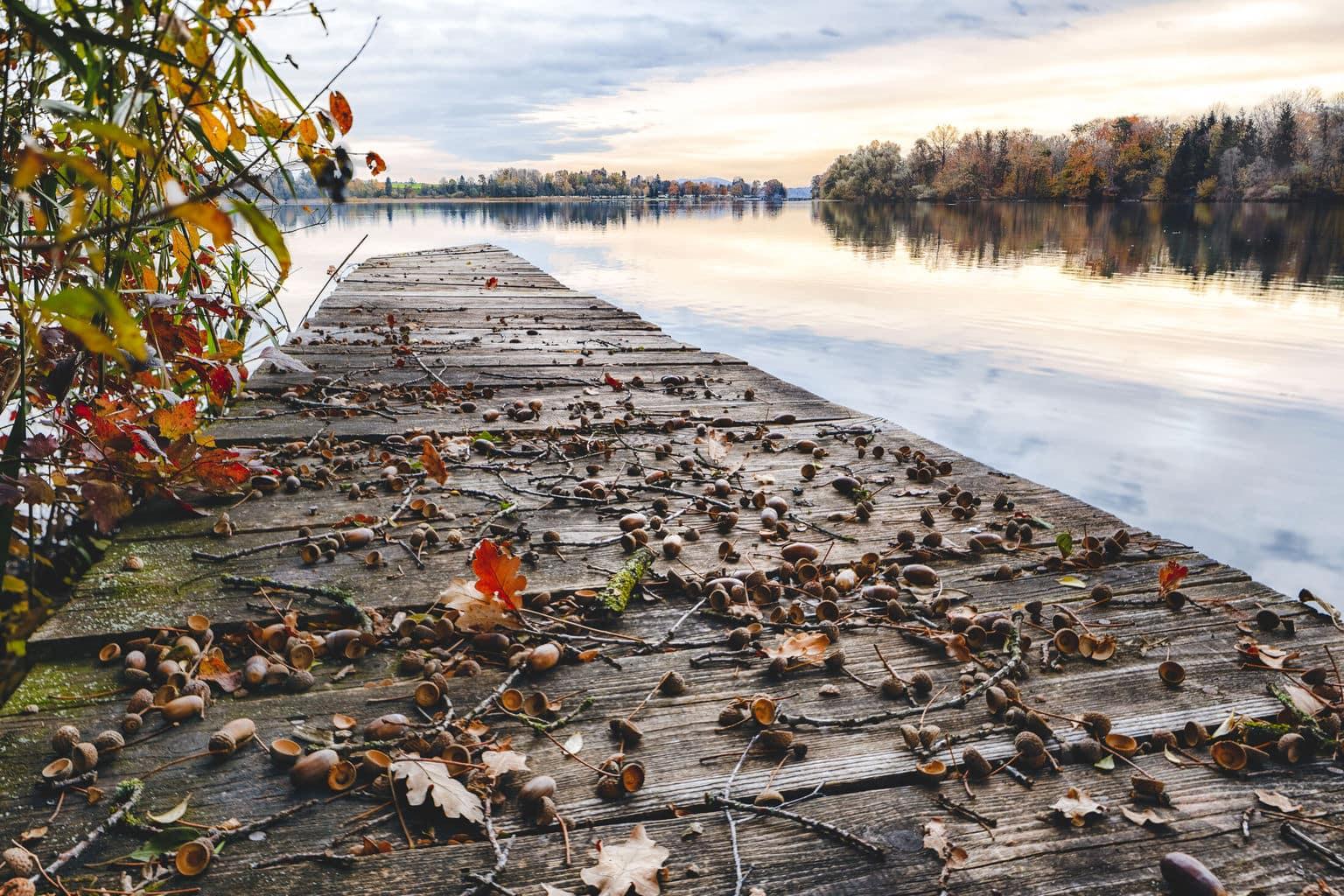 Het Waginger Meer in de Chiemgau in Beieren tijdens de herfst
