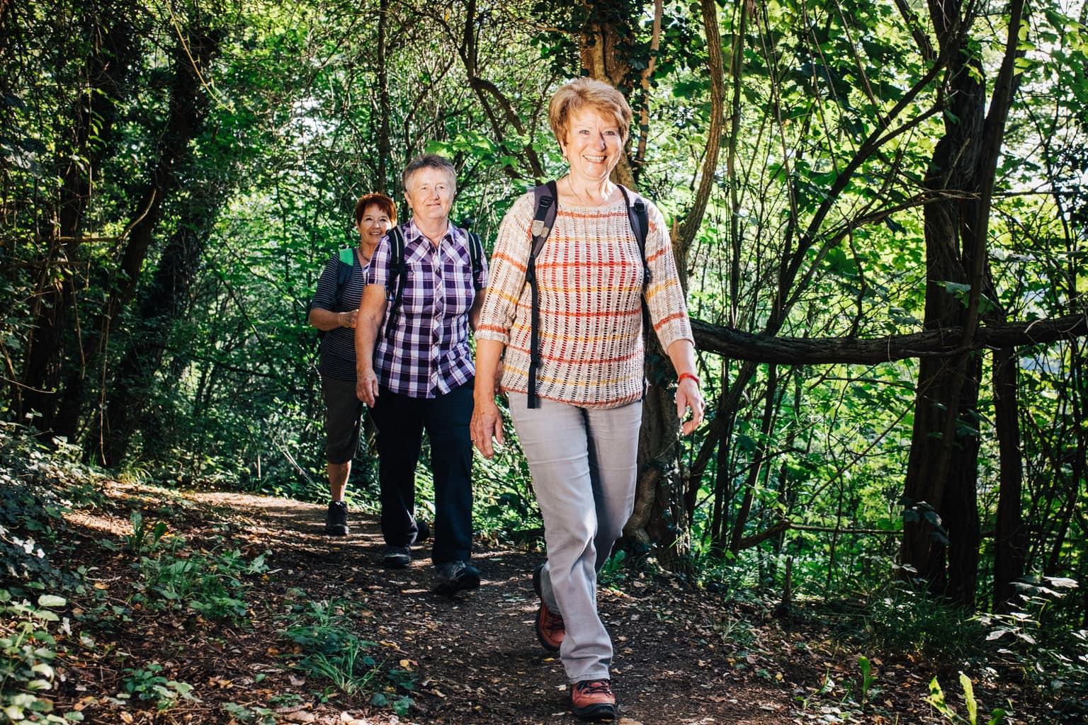Wandelaars in een bos in de buurt van Linz