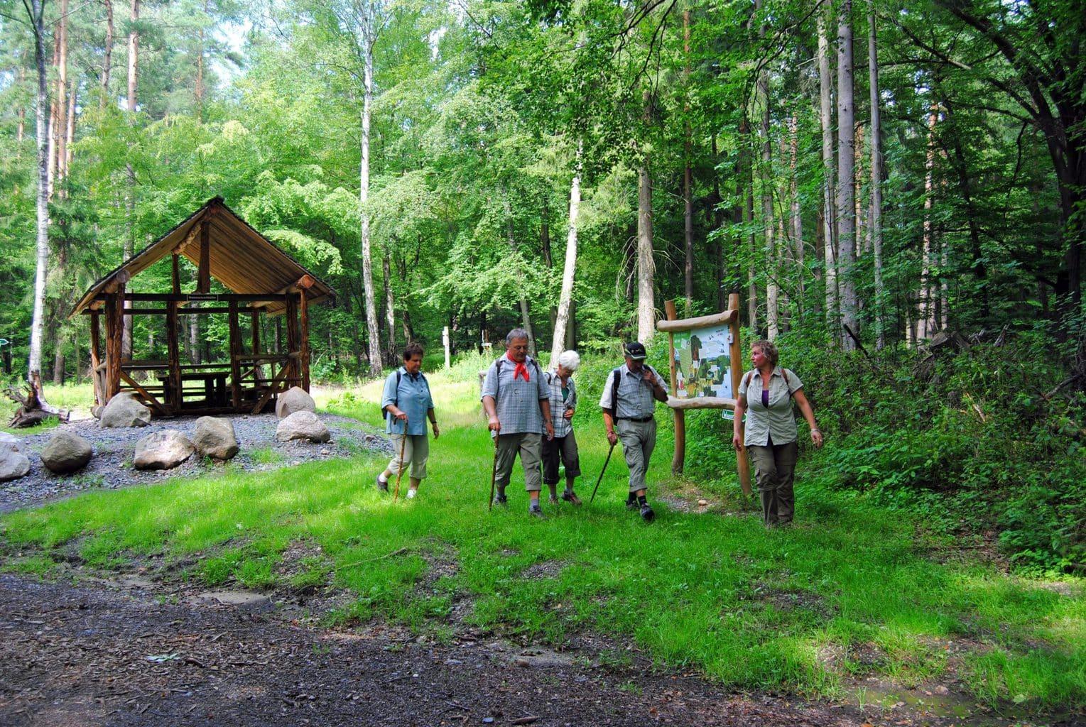 Wandelaars in de buurt van Leipzig in de Dübener Heide