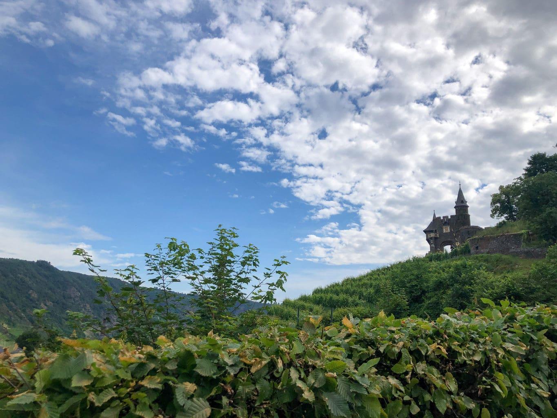 Een torentje met wijngaard bij Rijksburcht Coburg aan de Moezel