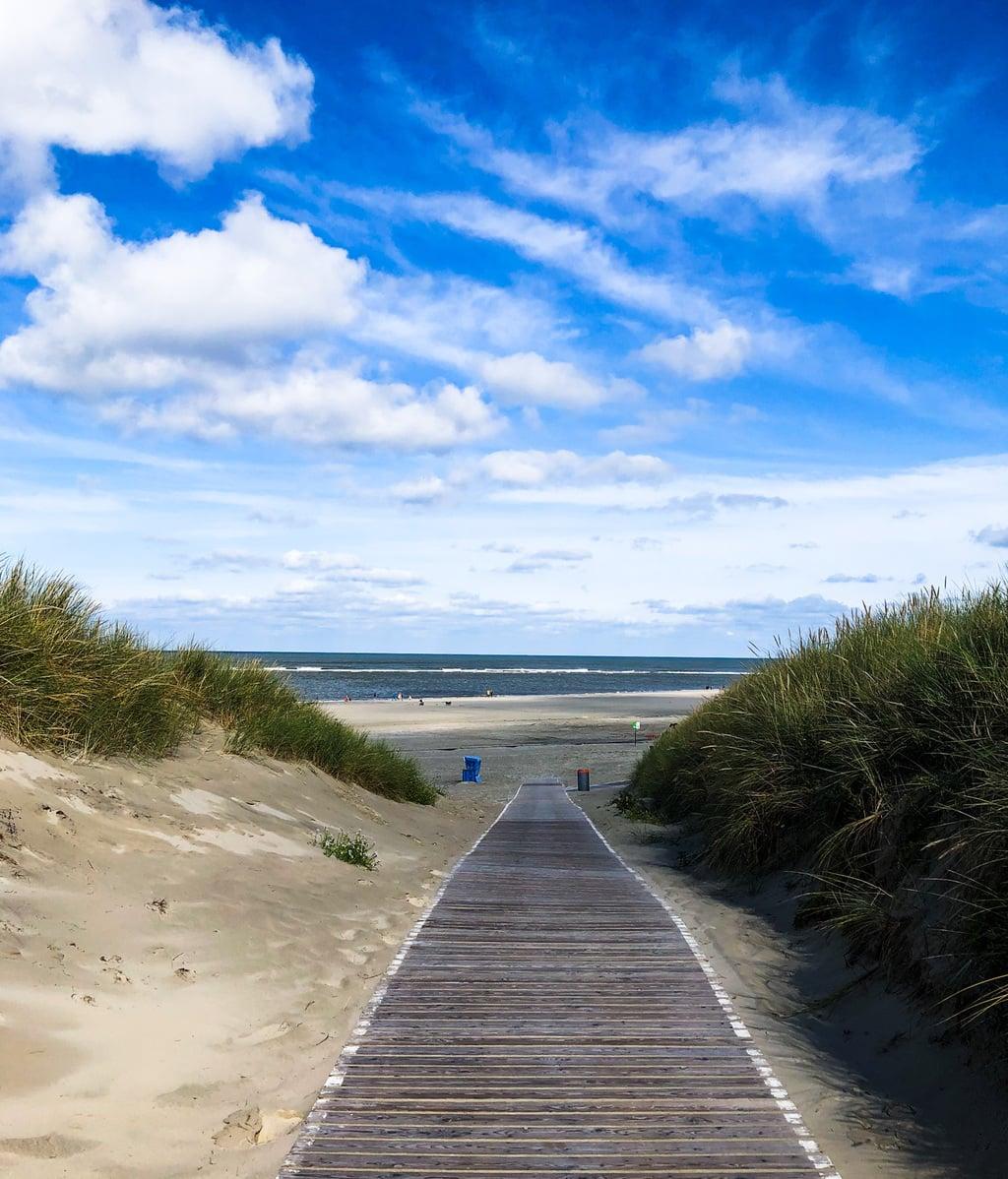 Weg met houten planken op het eiland Langeoog